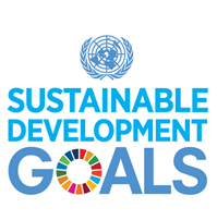 Global governance and the role of multinational companies in achieving the Sustainable Development Goals